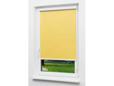 Seitenzugrollo Lysel Outlet - Kassettenrollo abdunkelnd Zinkgelb, (B x H) 100cm x 175cm in gelb/Zinkgelb