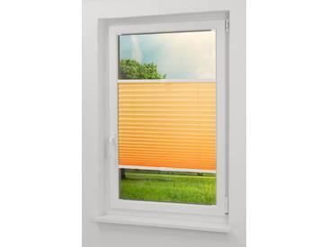 Lysel Outlet - Qualitätsplissee Crush Tageslicht apricot  - Plissee in der Größe (Bx H) 100cm * 130cm