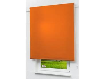 Lysel Outlet - Basisrollo Struktur Tageslicht Rotorange, (B x H) 152.50cm x 190cm in orange/rotorange