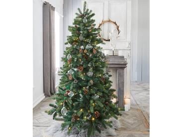 Weihnachtsbaum Helford