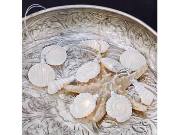 Lichterkette White Shells