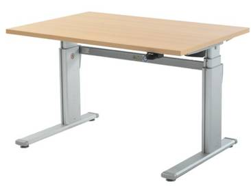 Schreibtisch »Up & Down 2« 120 cm und elektrisch höhenverstellbar bis 131 cm braun, Wellemöbel, 120x66x80 cm