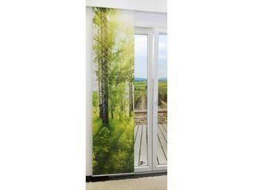 Schiebegardine  von LYSEL® - Birkenhain lichtdurchlässig mit Motiv in den Maßen 245 cm x 60 cm grün/maigrün