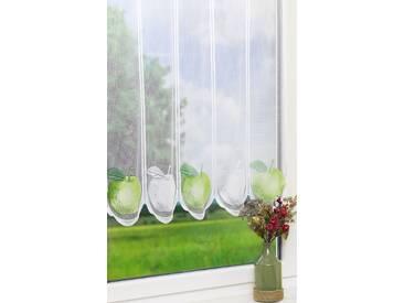 Scheibengardine  von LYSEL® - Apfel  (Bx H) 90cm * 75cm grün/mehrfarbig