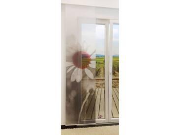 Flächengardine  von LYSEL® - Blüte transparent mit Motiv in den Maßen 245 cm x 60 cm grau/graurot