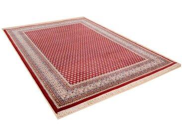 Orientteppich Abbas Meraj Mir THEKO rechteckig Höhe 12 mm...