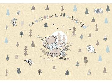 Komar Fototapete Disney Winnie Pooh Best Bear 368/254 cm