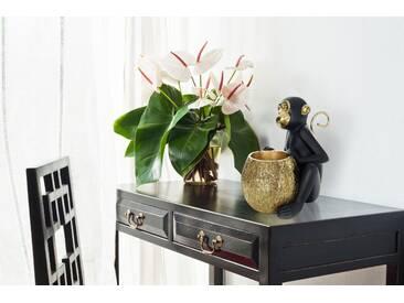 Kayoom Skulptur Sitting Monkey 100 Gold / Schwarz