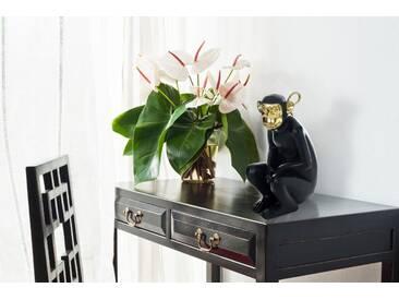 Kayoom Skulptur Sitting Monkey 300 Gold / Schwarz