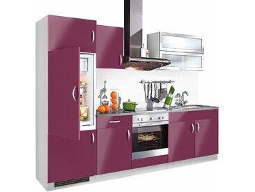 wiho Küchen Küchenzeile Amrum