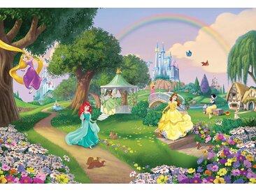 Fototapete Disney Princess Rainbow Komar Comic