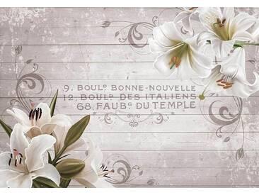 Fototapete »Weiße Lilien Vintage« 368/254 cm