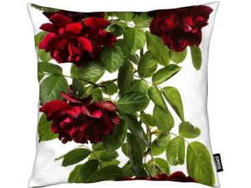 Dekokissen, »Flora - Rose«, Juniqe