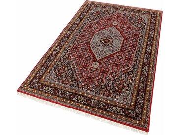Parwis Orientteppich »Mohammadi Bidjar«, 250x350 cm, 20 mm Gesamthöhe, rot