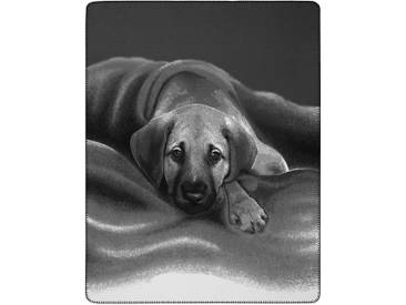 Biederlack Wohndecke »Barry«, 150x200 cm, grau