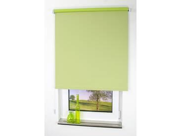 Liedeco Seitenzug-Rollo »Uni«, H/B 180/142 cm, grün