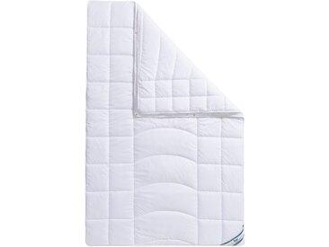 F.a.n. Frankenstolz Microfaserbettdecken »Warmmax«, ideal für Allergiker