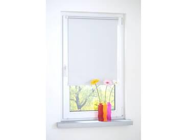 Liedeco Seitenzugrollo, H/B 150/100 cm, einfache Montage ohne Bohren, weiß