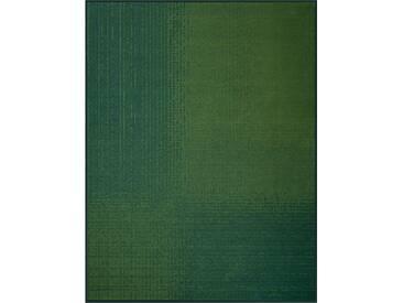 Biederlack Wohndecke »Illusion«, 150x200 cm, grün