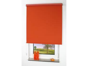 Liedeco Seitenzug-Rollo »Uni«, H/B 240/102 cm, orange
