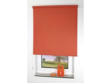 Liedeco Seitenzugrollo »Uni«, H/B 240/102 cm, Montage ohne Bohren, orange