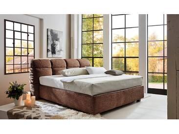 Places Of Style  Boxpringbett  »Erin«, braun, 180/200 cm