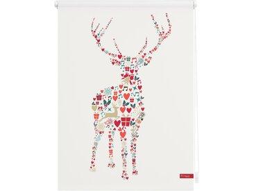 Lichtbick Seitenzugrollo »Klemmfix Motiv Rentier Weihnachten«, H/B 150/120 cm, bunt