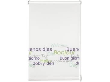 Gardinia Seitenzugrollo »Dekor Welcome«, H/B 150/75 cm, weiß, einfache Montage, inkl. Zubehör
