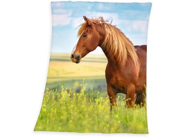 Herding Young Collection Krabbeldecke »Pferd«, 130x160 cm, hautfreundlich, pflegeleicht, grün, aus 100% Polyester