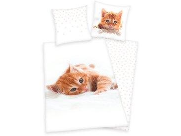 Herding Young Collection Kinderbettwäsche »Katze«, 80x80 cm, waschbar, weiß