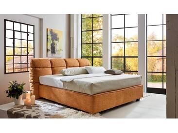 Places Of Style  Boxpringbett  »Erin«, gelb, 180/200 cm