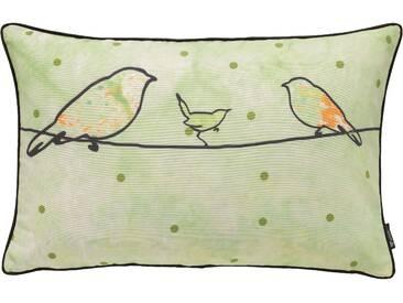 Emotion Textiles Kissenbezug »Crazy Birds«, grün