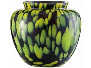 Zwiesel 1872 SPLASH Vase