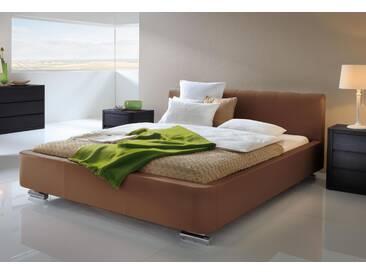 Polsterbett Hasena Dream-Line Bett Rondo in Kunstleder, Echtleder oder Stoff erhältlich