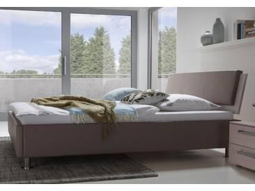 Polsterbett Hasena Dream-Line Bett Curvino in Kunstleder, Echtleder oder Stoff erhältlich
