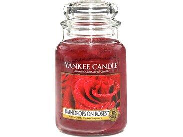 Duftkerze Raindrops on Roses, 623 g [28,88€*/1kg] Yankee Candle
