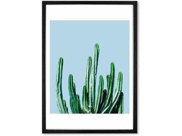 Cactus, mit Rahmen (65 x 90 cm)