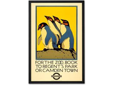 For the Zoo book to Regents Park, gerahmter Kunstdruck