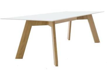 Conmoto Y-Woman Tisch, HPL weiß / schwarze Kante / Eiche, H 72 | B 240 | T 100 cm