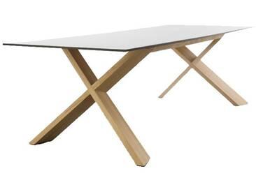 Conmoto X-Man Tisch, HPL weiß / schwarze Kante / Eiche, H 72 | B 240 | T 100 cm