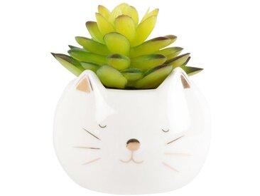 Künstliche Pflanze im Porzellantopf 'Katze'