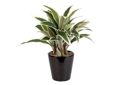 Künstliche Pflanze im schwarzen Keramiktopf