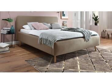Polsterbett Carballo in 140x200 cm, Grau, mehr Farben und Größen auf Betten.de
