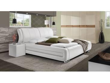 Polsterbett Petersfield in 180x200 cm, Weiß, mehr Farben und Größen auf Betten.de