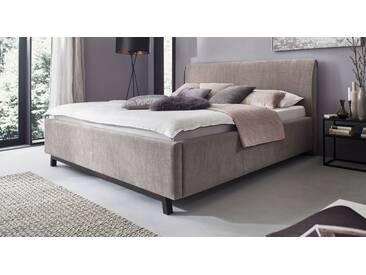 Polsterbett Rofo in 180x200 cm, Grau, mehr Farben und Größen auf Betten.de