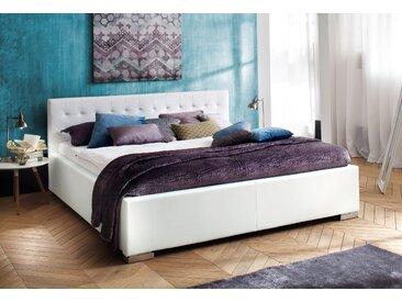 meise.möbel Polsterbett, wahlweise in Komfortliegehöhe, weiß, 158 cm x 216 cm x 40 cm
