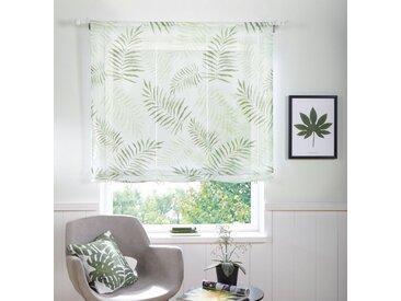 my home Raffrollo »Paula«, mit Stangendurchzug, ohne Bohren, Bändchenrollo, grün, Stangendurchzug, halbtransparent, grün