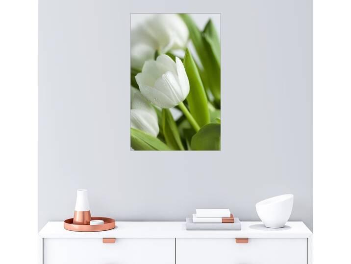 Posterlounge Wandbild - Nailia Schwarz »Weiße Tulpen 02«, grün, Poster, 20 x 30 cm, grün