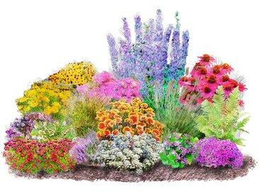 BCM Beet & Balkonpflanze »Set 4-Jahreszeiten«, bunt, 0, 16 Pflanzen, bunt