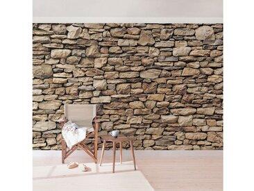 Bilderwelten Vliestapete Steinoptik Premium Breit »Amerikanische Steinwand«, natur, 290x432 cm, Naturfarben